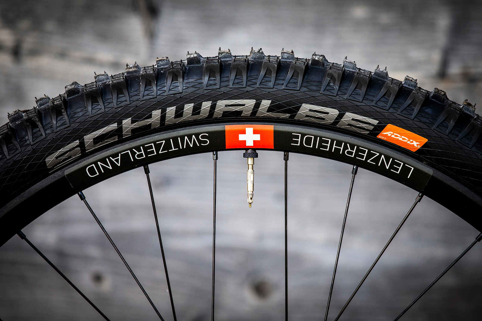 Schwalbe Tires - WORLD CHAMPS BIKE - Tahnee Seagrave's Transition TR11 - Mountain Biking Pictures - Vital MTB