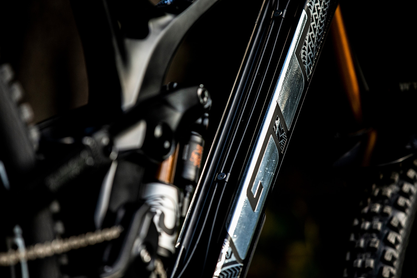 Silver and Slick - WORLD CHAMPS BIKE - Wyn Masters' GT Fury - Mountain Biking Pictures - Vital MTB