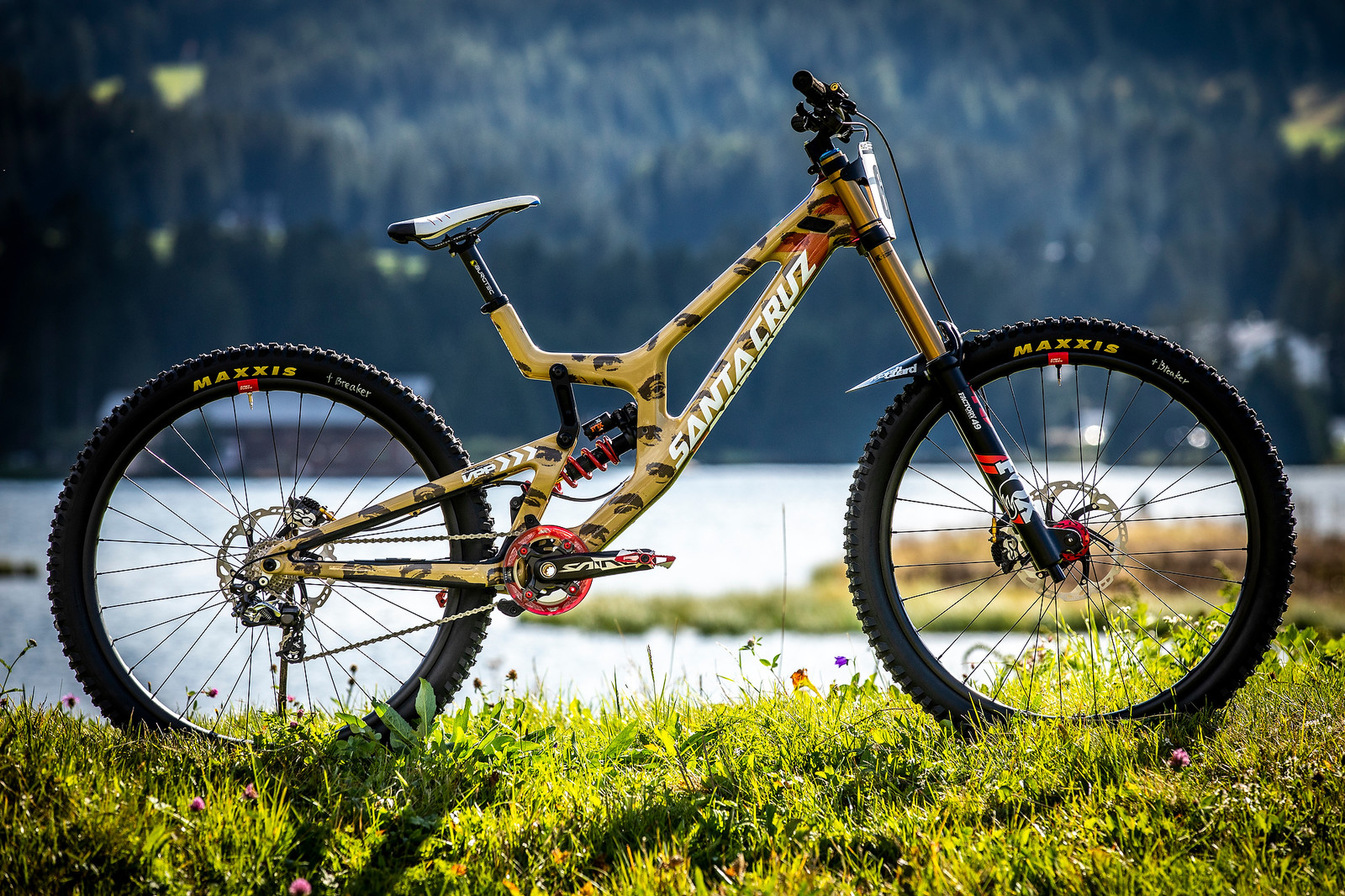 Eye Candy - Greg Minnaar's Santa Cruz V10 World Champs Bike - WORLD CHAMPS BIKE - Greg Minnaar's Santa Cruz V10 - Mountain Biking Pictures - Vital MTB