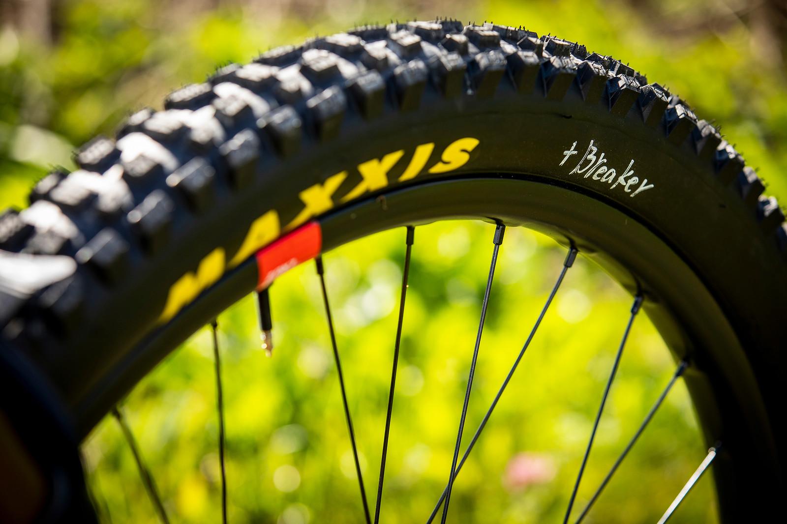 Maxxis Plus Breaker - WORLD CHAMPS BIKE - Greg Minnaar's Santa Cruz V10 - Mountain Biking Pictures - Vital MTB