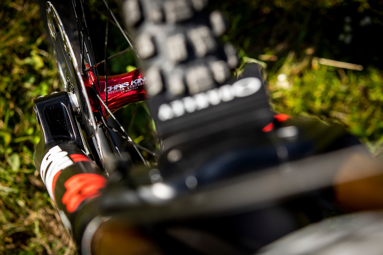 Arty Hub Shot - WORLD CHAMPS BIKE - Greg Minnaar's Santa Cruz V10 - Mountain Biking Pictures - Vital MTB