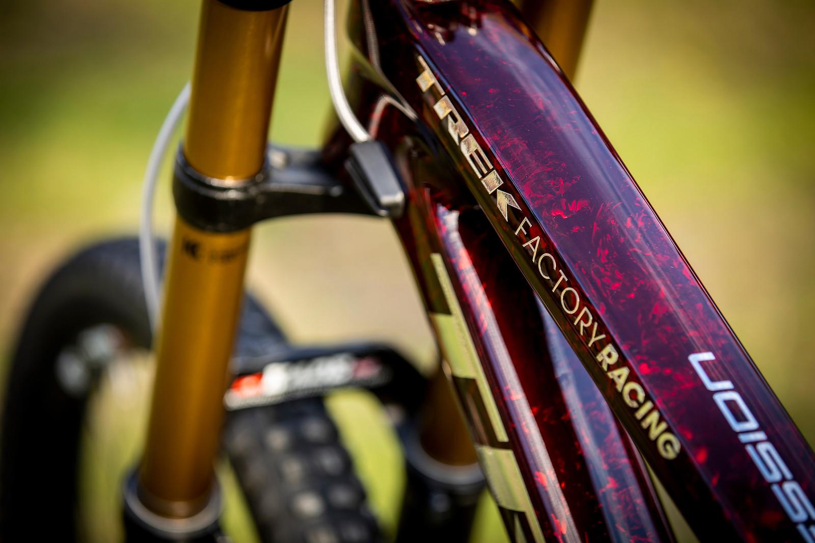 Deep Purple - WORLD CHAMPS BIKE - Kade Edwards' Trek Session - Mountain Biking Pictures - Vital MTB