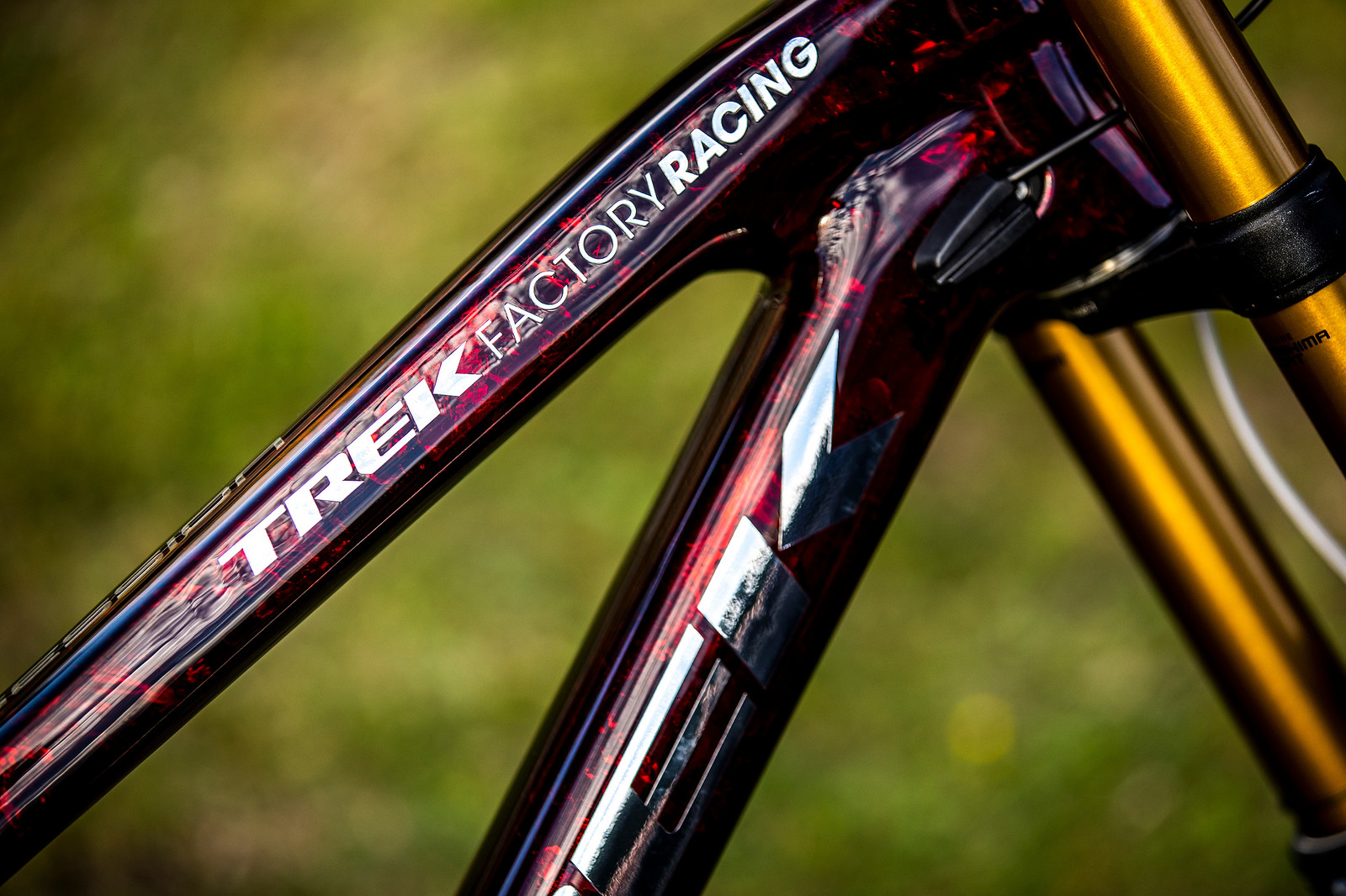 Shiny - WORLD CHAMPS BIKE - Kade Edwards' Trek Session - Mountain Biking Pictures - Vital MTB