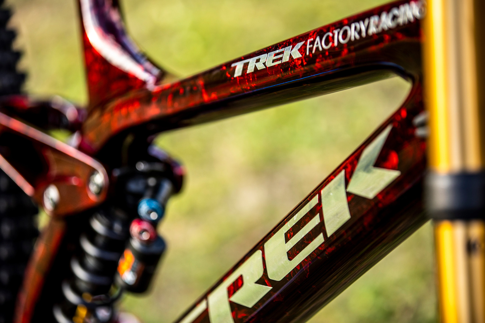 Delicious - WORLD CHAMPS BIKE - Kade Edwards' Trek Session - Mountain Biking Pictures - Vital MTB