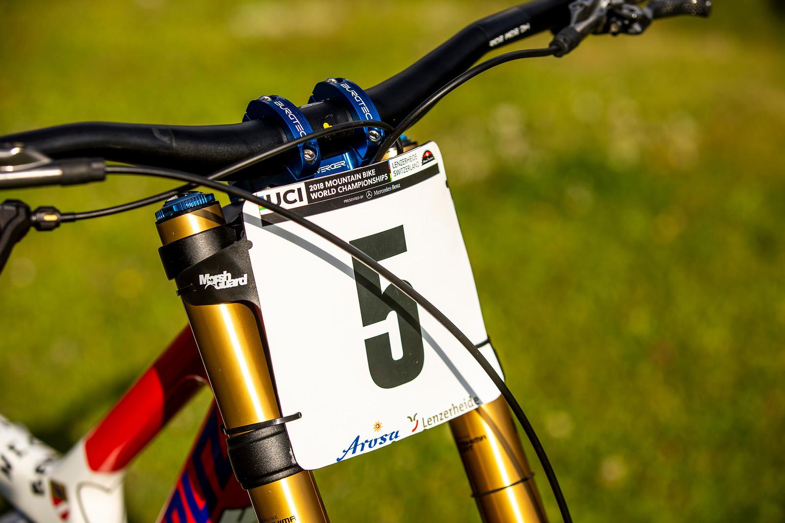 Shorter Bike Has the Plate - WORLD CHAMPS BIKES - Loris Vergier's Santa Cruz V10s - Mountain Biking Pictures - Vital MTB