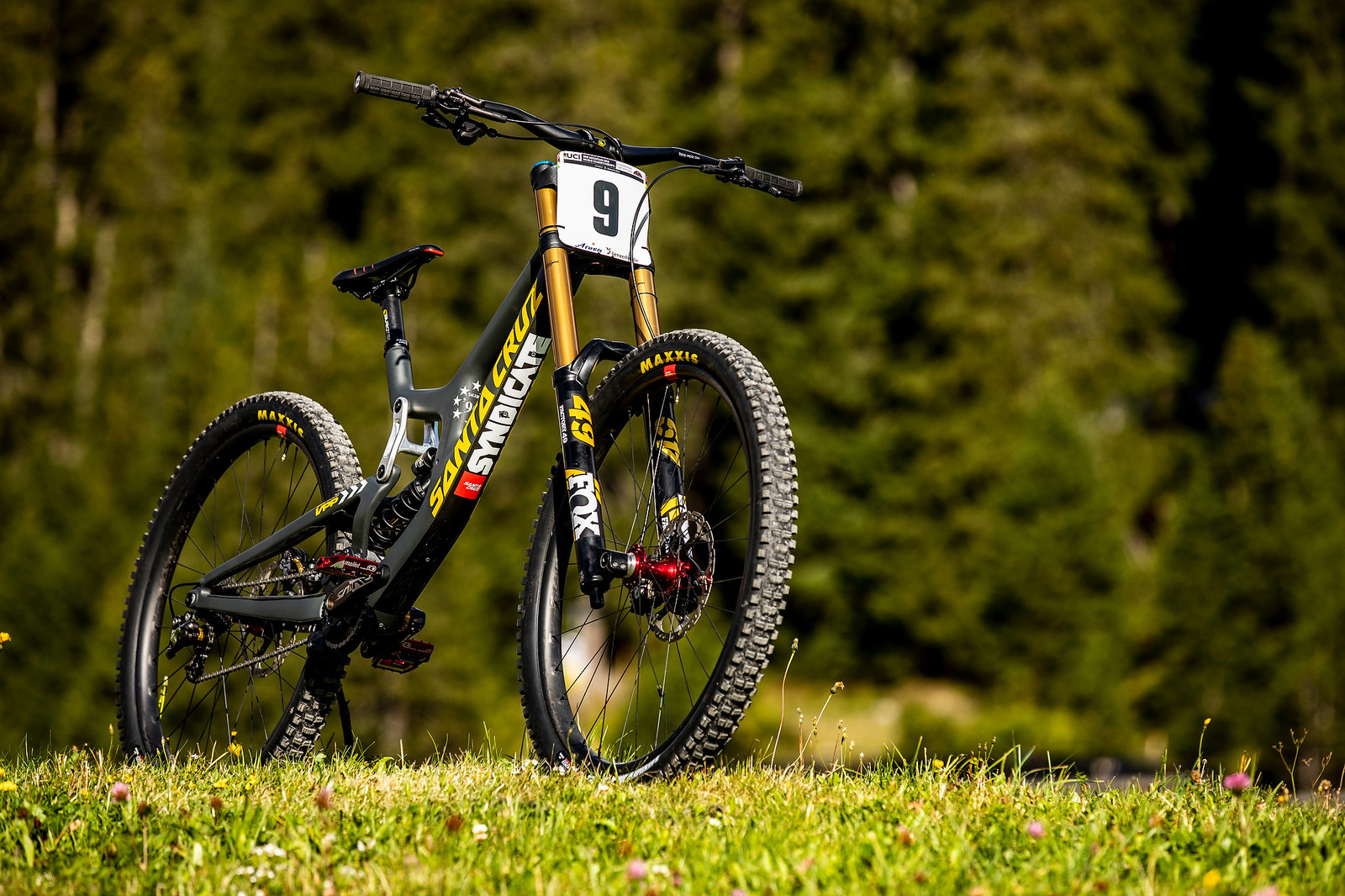 Under the Radar - Luca Shaw's Santa Cruz V10 World Champs Bike - WORLD CHAMPS BIKE - Luca Shaw's Santa Cruz V10 - Mountain Biking Pictures - Vital MTB