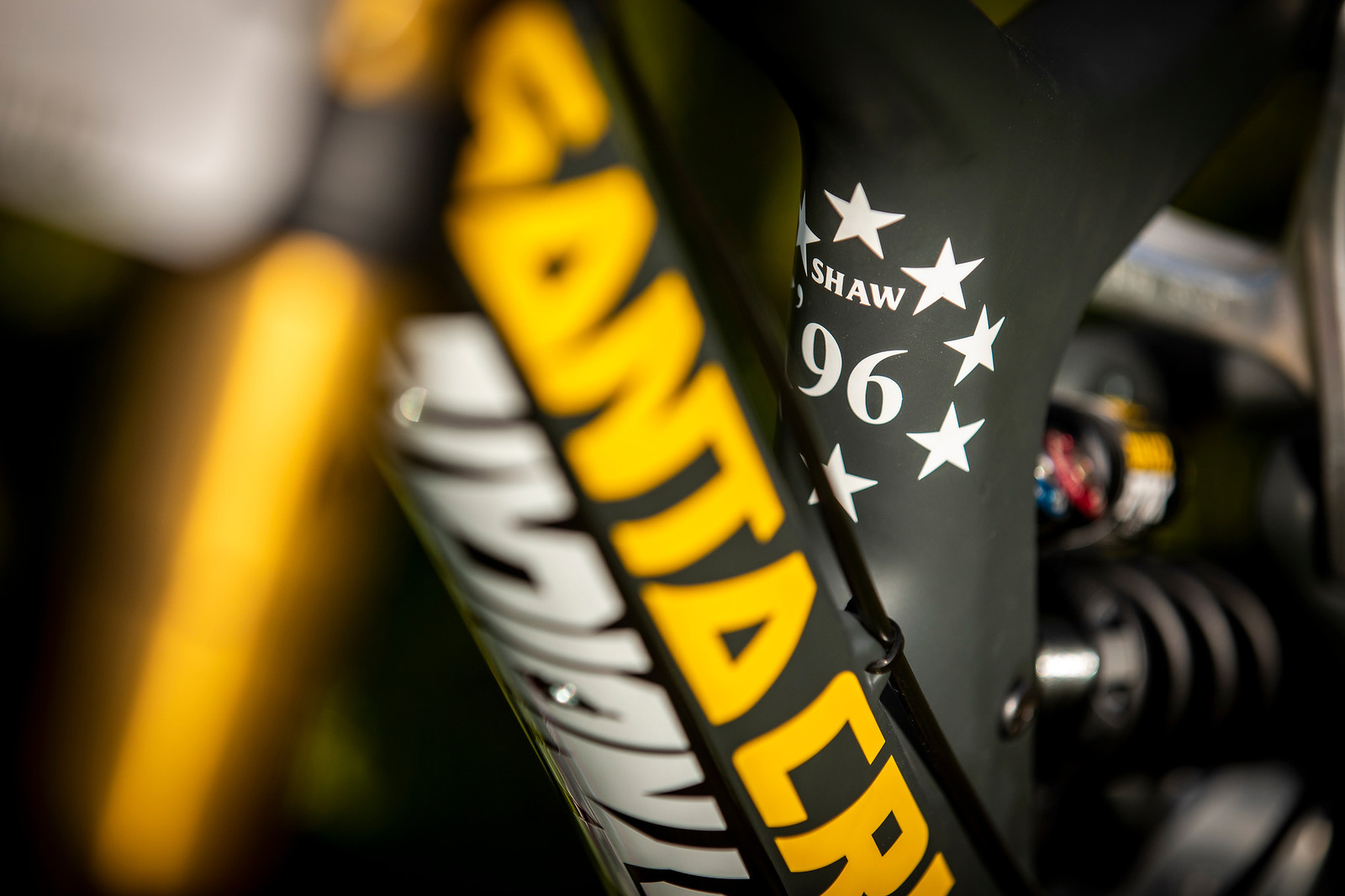 Stars, No Stripes - WORLD CHAMPS BIKE - Luca Shaw's Santa Cruz V10 - Mountain Biking Pictures - Vital MTB