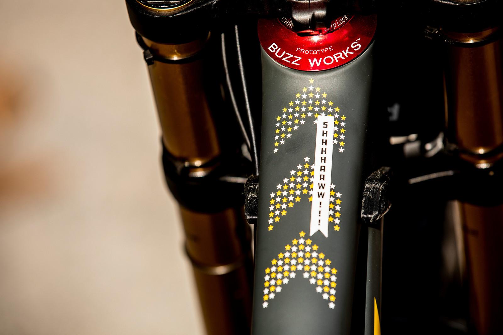 Shhhhaaaawww!! - WORLD CHAMPS BIKE - Luca Shaw's Santa Cruz V10 - Mountain Biking Pictures - Vital MTB
