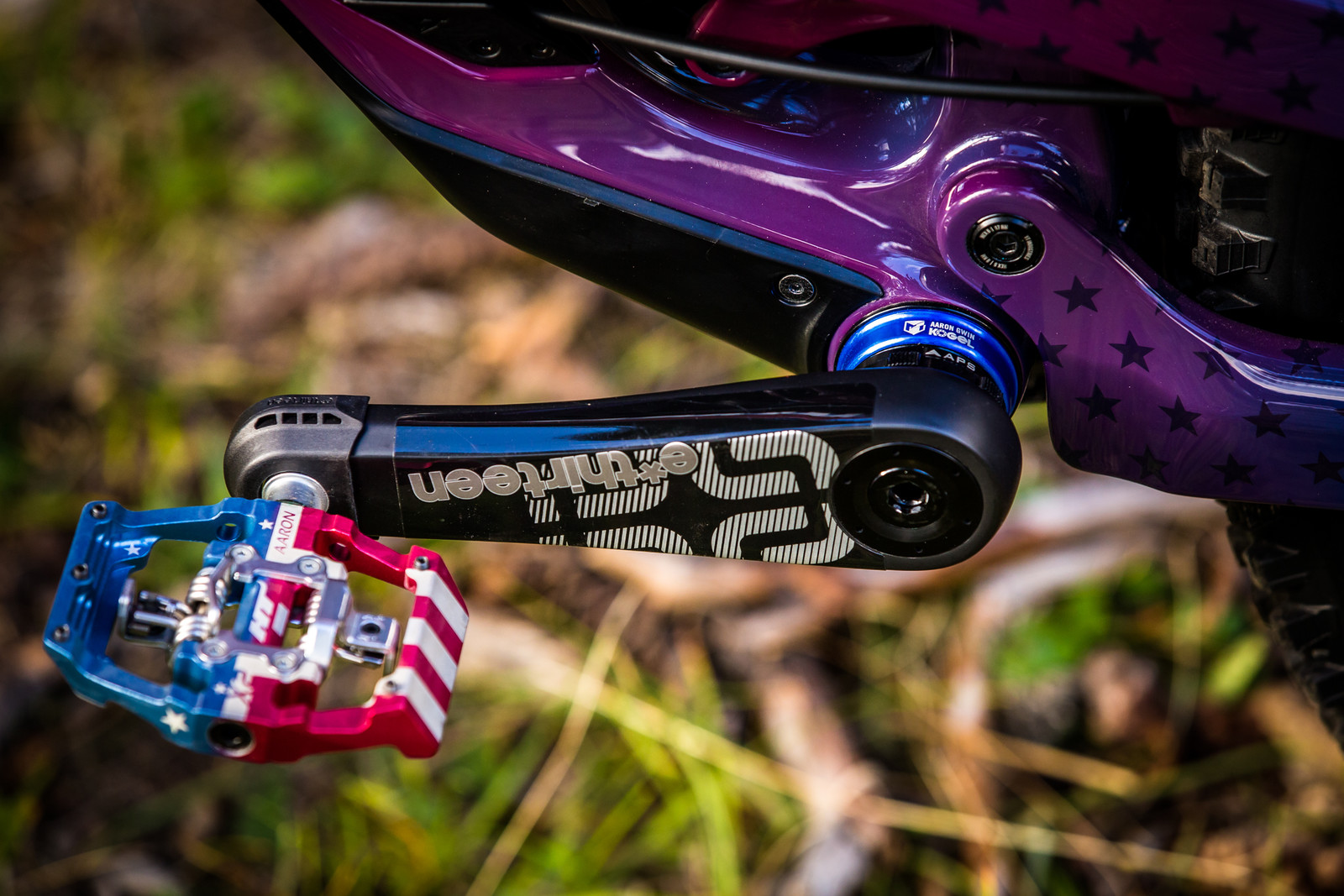 Stars and Stripes - WORLD CHAMPS BIKE - Aaron Gwin's YT TUES - Mountain Biking Pictures - Vital MTB
