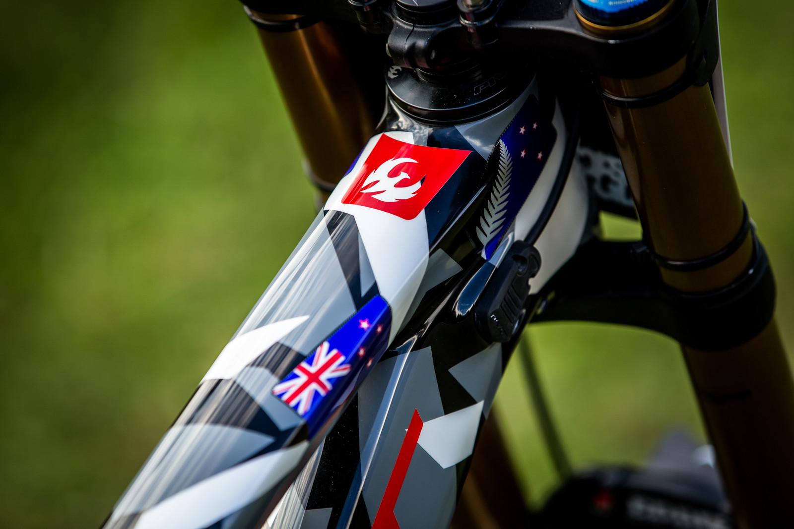Details - WORLD CHAMPS BIKE - Eddie Masters' Pivot Phoenix - Mountain Biking Pictures - Vital MTB