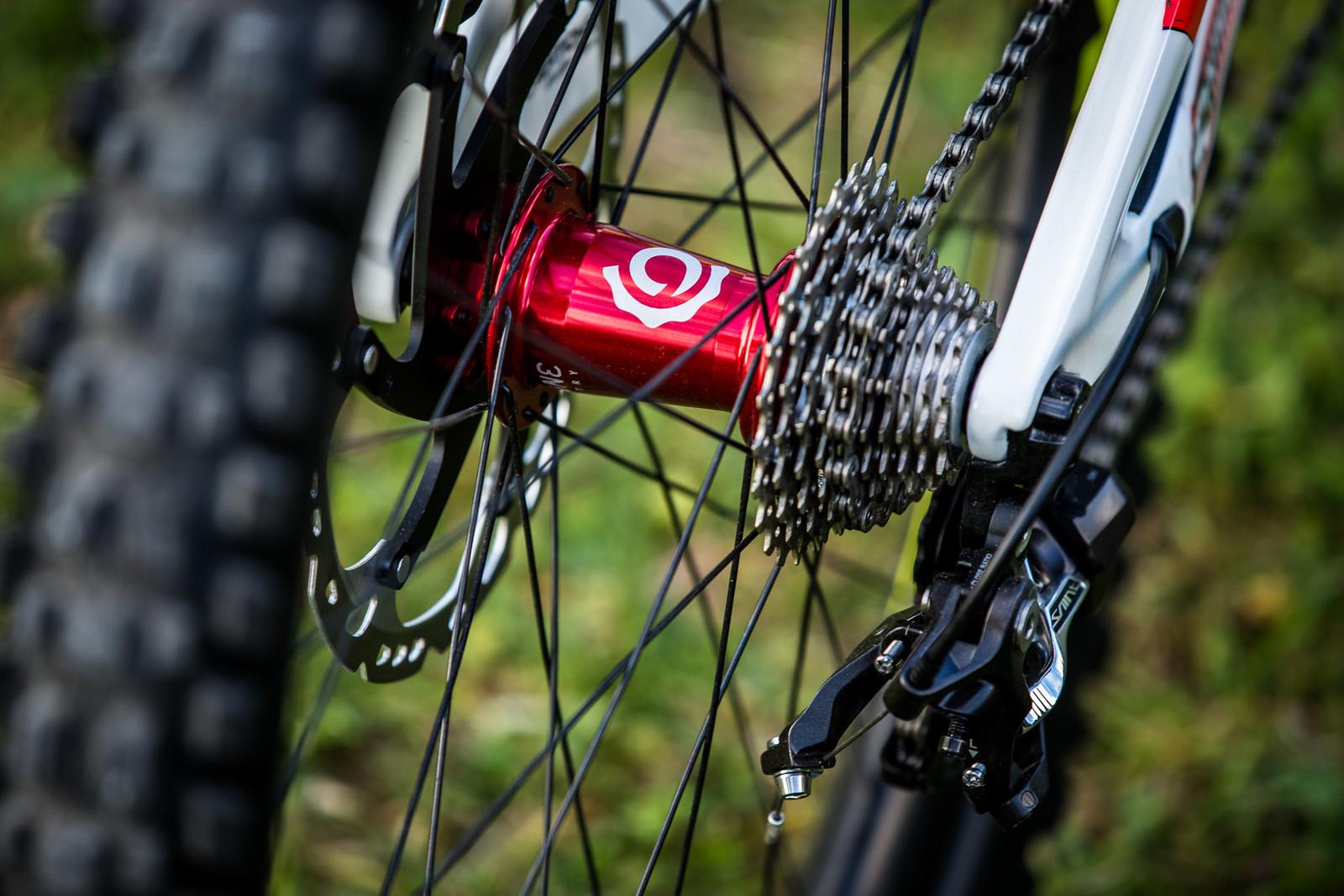 Industry Nine Bling - WORLD CHAMPS BIKE - Emilie Siegenthaler's Pivot Phoenix - Mountain Biking Pictures - Vital MTB