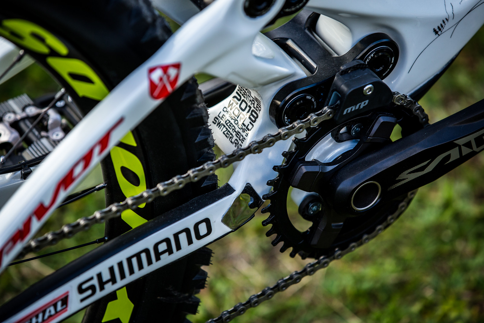 Details - WORLD CHAMPS BIKE - Emilie Siegenthaler's Pivot Phoenix - Mountain Biking Pictures - Vital MTB