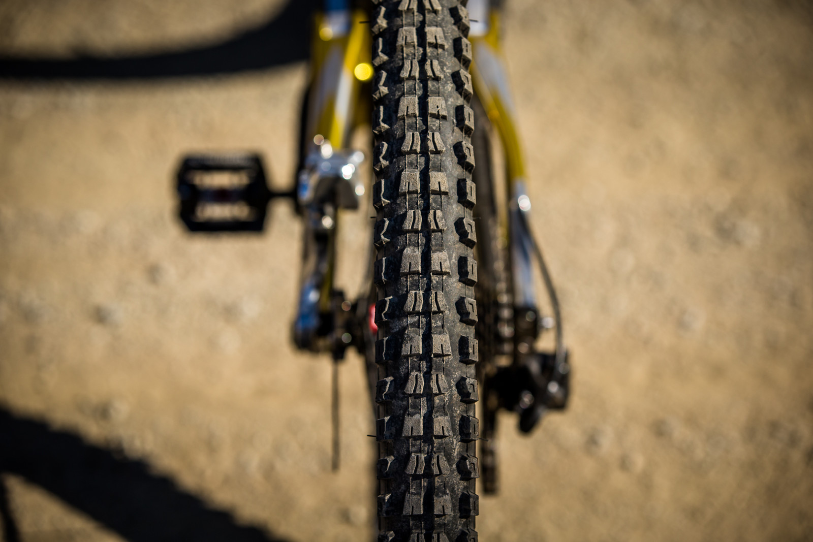Specialized Butcher 2.3-inch Tires - WINNING BIKE - Loic Bruni's Specialized Demo - Mountain Biking Pictures - Vital MTB