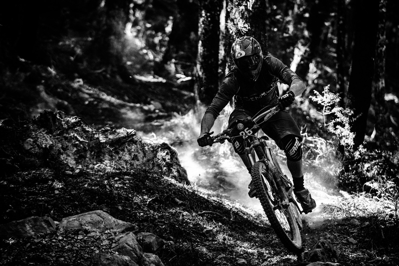 Andre Jaworski - 2019 Dodzy Memorial Enduro - Mountain Biking Pictures - Vital MTB