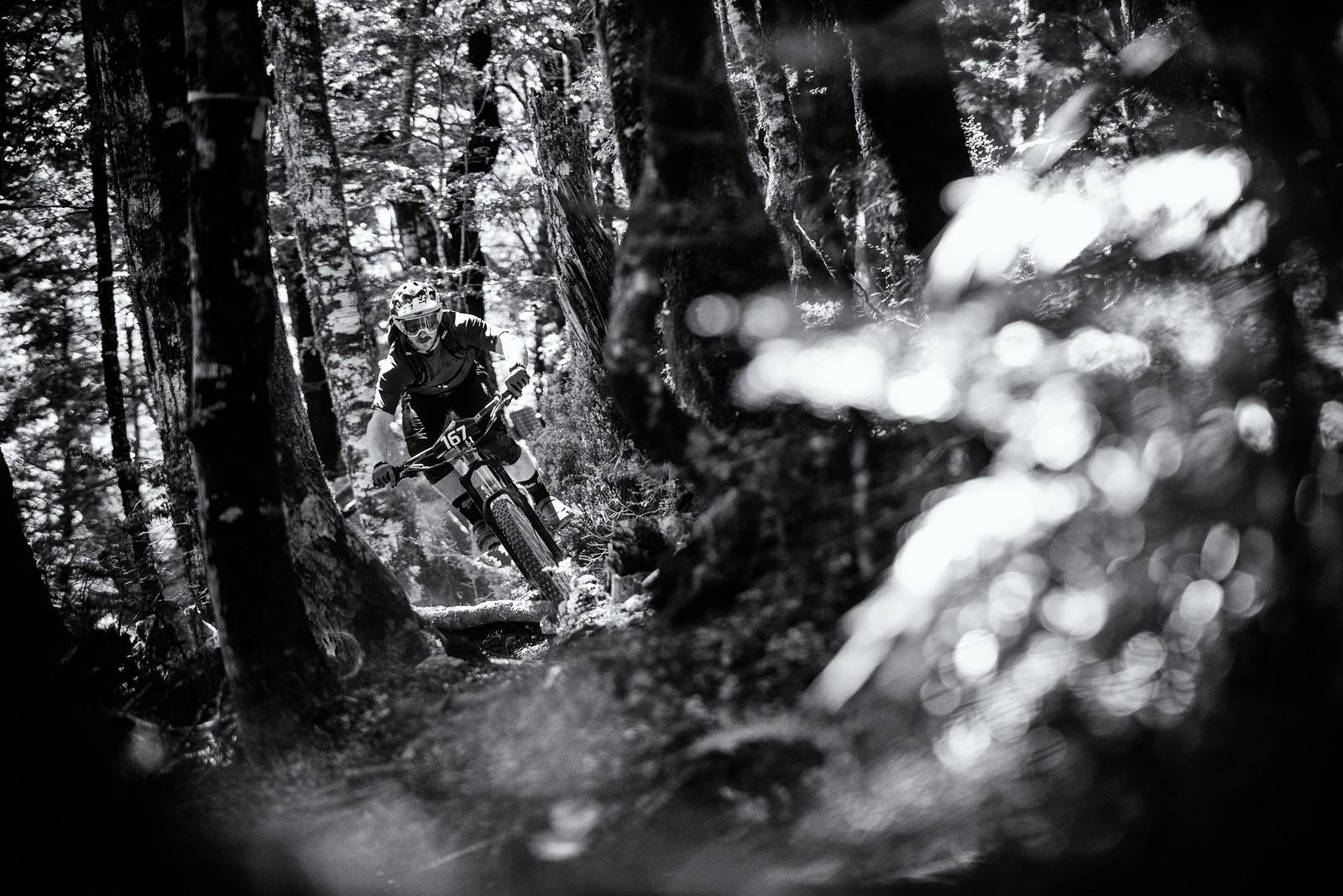 Jimmy Pollard - 2019 Dodzy Memorial Enduro - Mountain Biking Pictures - Vital MTB