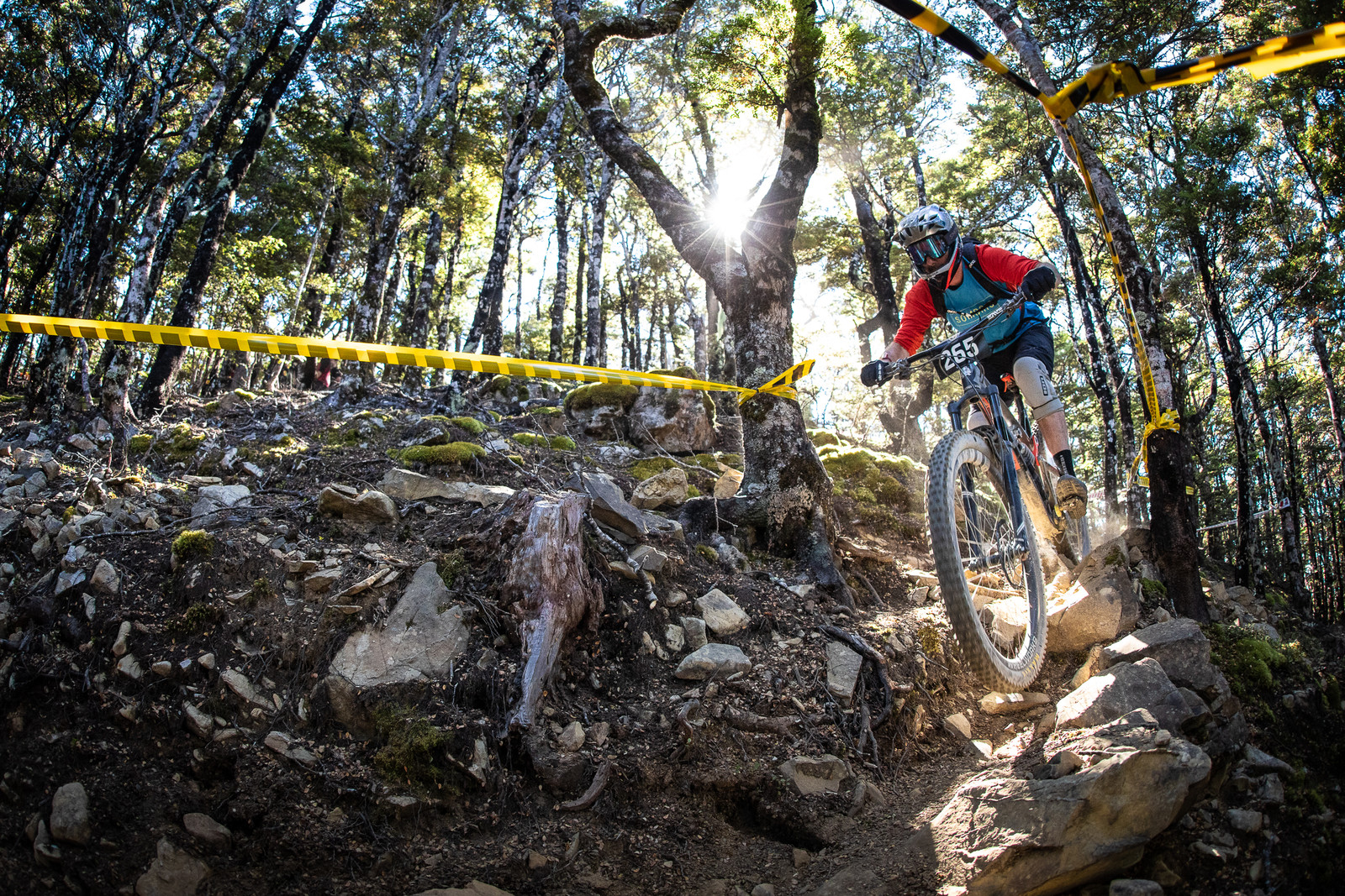 Max Gough - 2019 Dodzy Memorial Enduro - Mountain Biking Pictures - Vital MTB