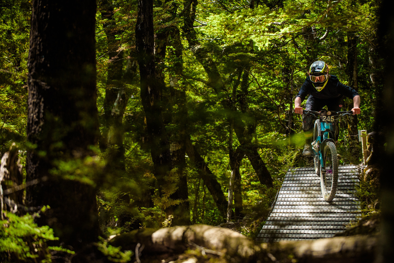 Cullen Paurini - 2019 Dodzy Memorial Enduro - Mountain Biking Pictures - Vital MTB