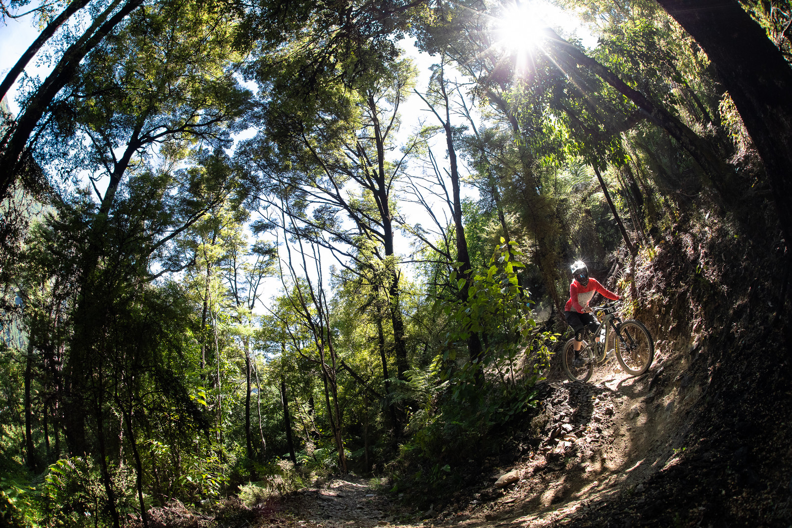 Charlotte Frost Switchin' Back - 2019 Dodzy Memorial Enduro - Mountain Biking Pictures - Vital MTB