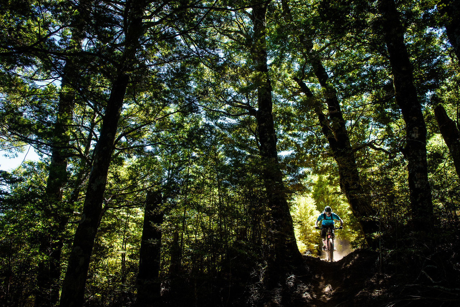 Flo De Vries, Hardtail - 2019 Dodzy Memorial Enduro - Mountain Biking Pictures - Vital MTB