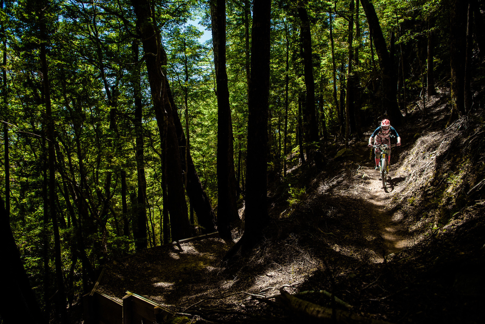 Mel Bloomfield - 2019 Dodzy Memorial Enduro - Mountain Biking Pictures - Vital MTB