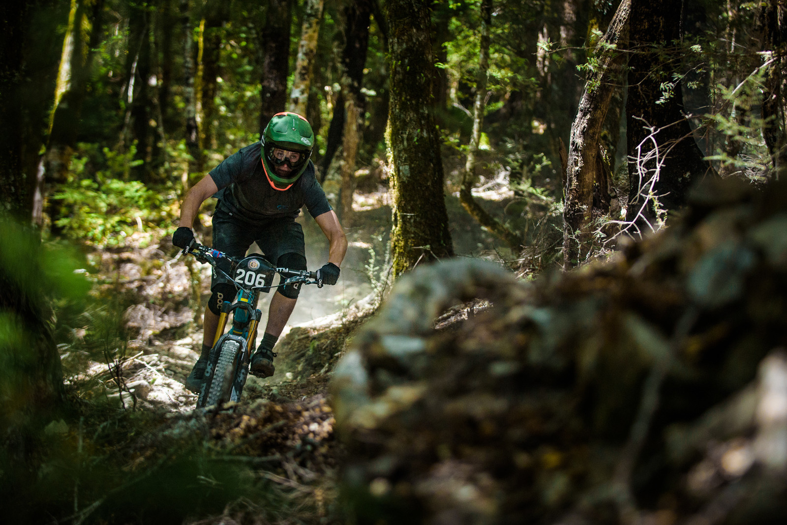 Charlie Murray - 2019 Dodzy Memorial Enduro - Mountain Biking Pictures - Vital MTB