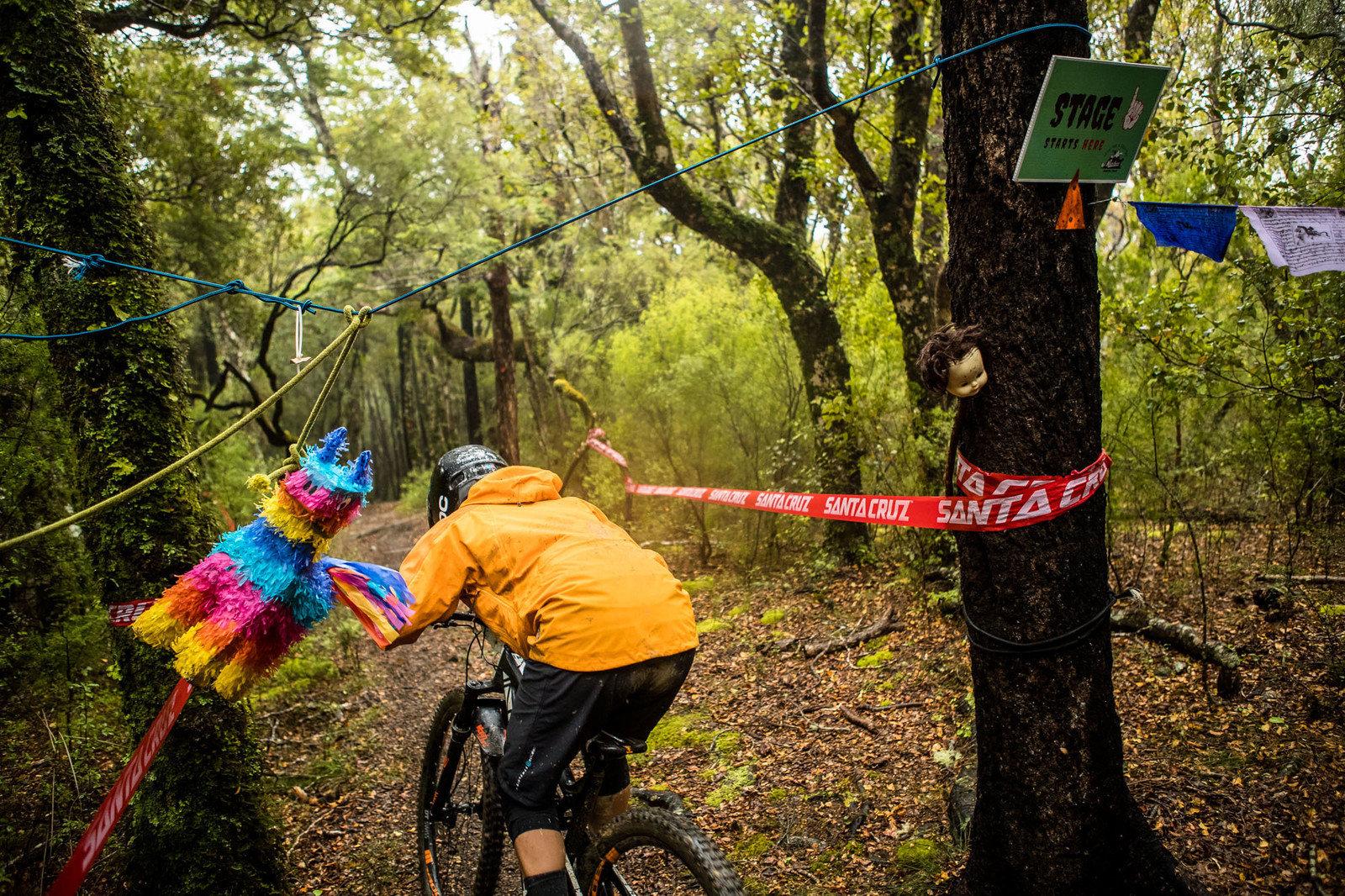 NZEnduro19 BB AS6I9704 - 2019 NZ Enduro Day 1 Photo Gallery - Mountain Biking Pictures - Vital MTB