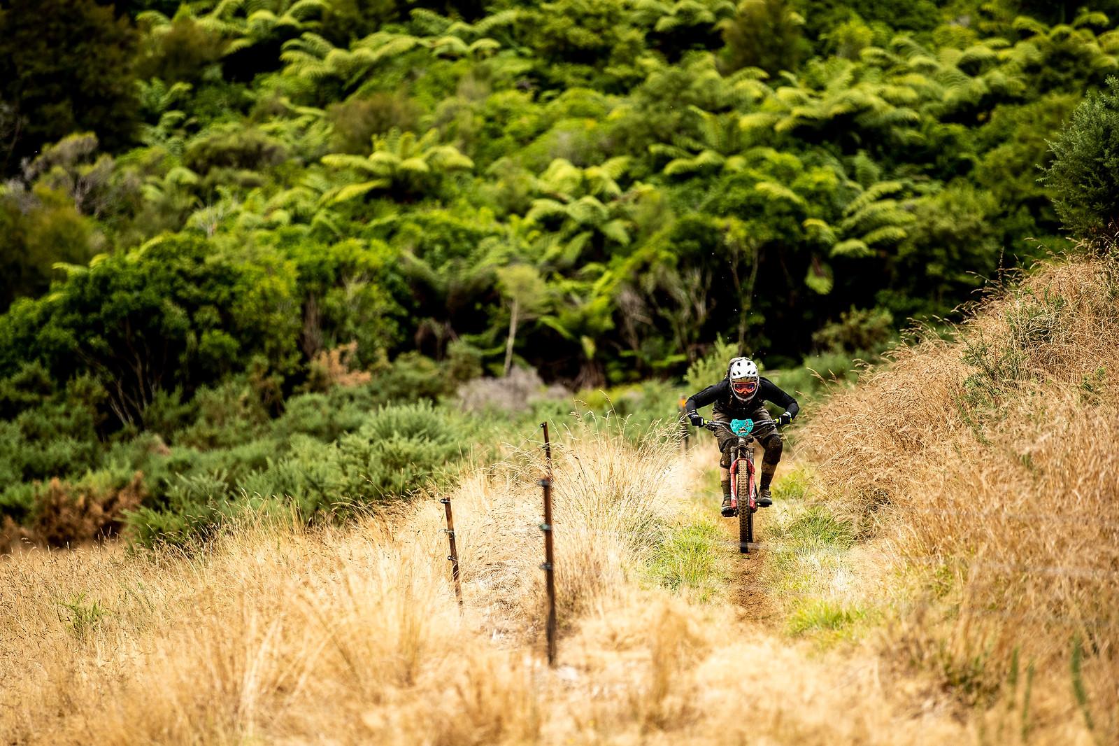 NZEnduro19  m1 8868 - 2019 NZ Enduro Day 2 Photo Gallery - Mountain Biking Pictures - Vital MTB