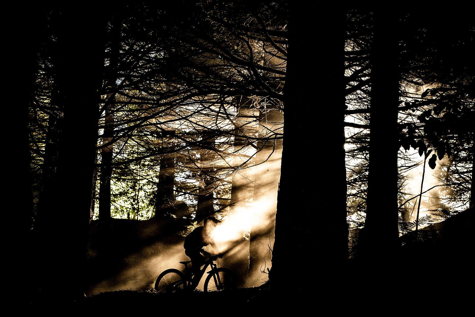 Dry, Dusty Rotorua - 2019 Enduro World Series Crankworx Rotorua - Mountain Biking Pictures - Vital MTB