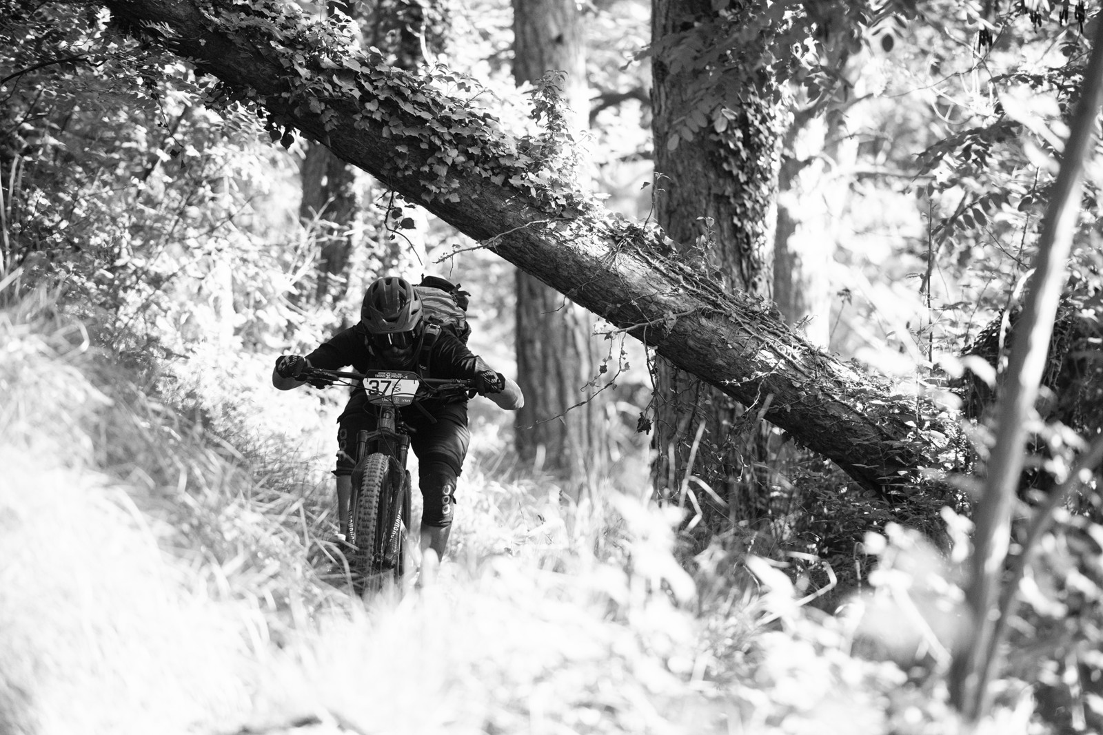 2019 Trans-Provence Day 4 Photo Gallery and Video - 2019 Trans Provence Day 4 Photo Gallery and Video - Mountain Biking Pictures - Vital MTB