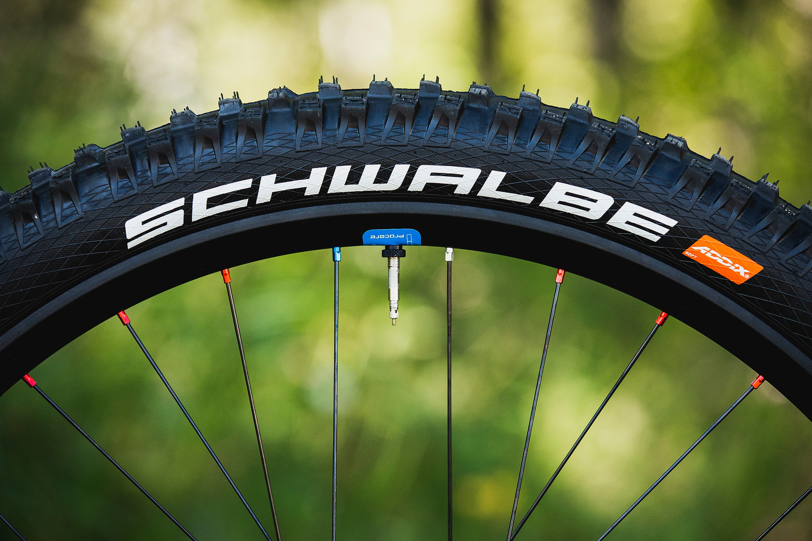 Schwalbe G-Up Crew Special Edition Tires with Pro Core - Tahnee Seagrave's World Championships Transition TR11 - Mountain Biking Pictures - Vital MTB
