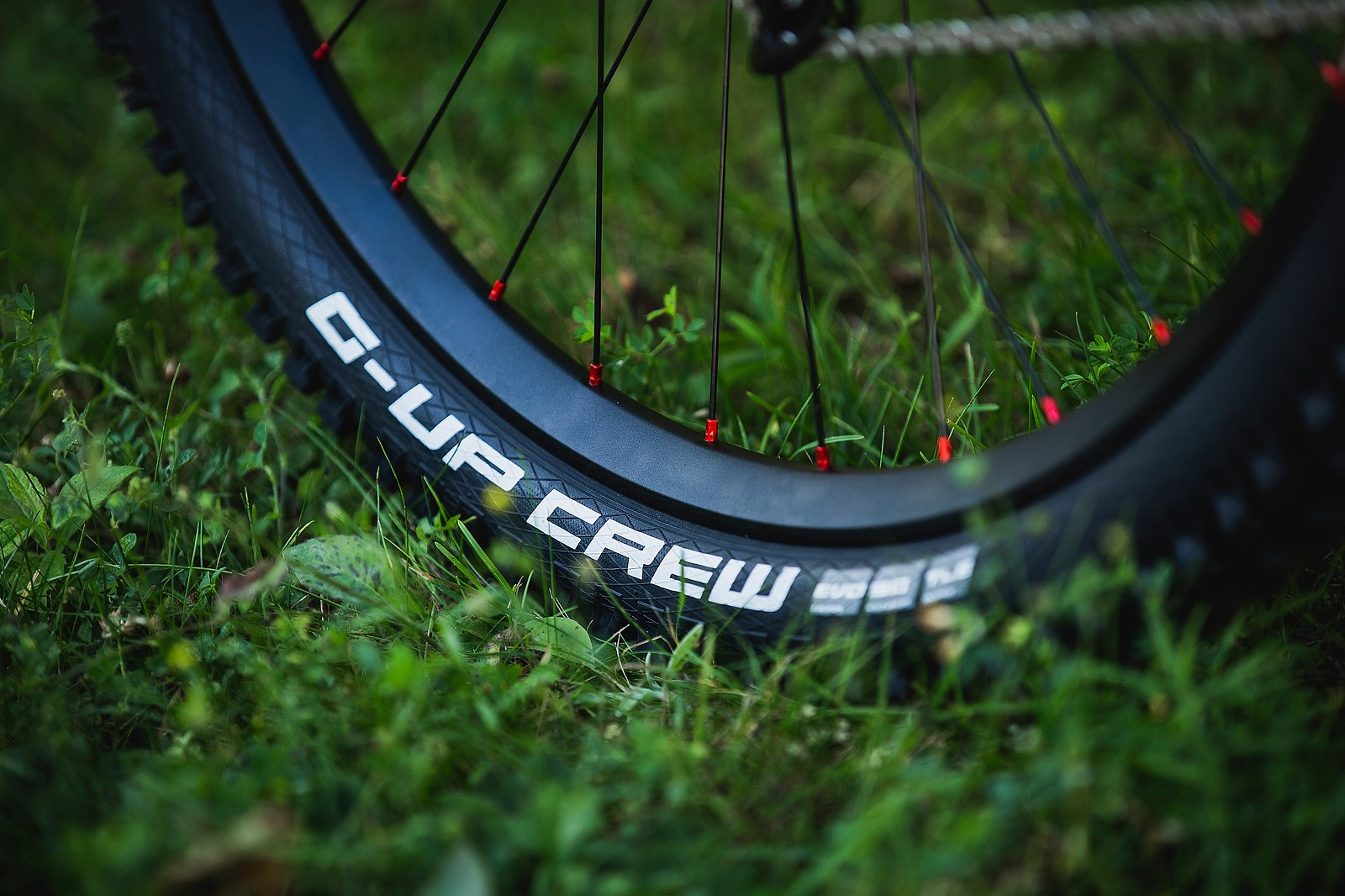 Schwalbe With the Custom Tire Labels - Tahnee Seagrave's World Championships Transition TR11 - Mountain Biking Pictures - Vital MTB