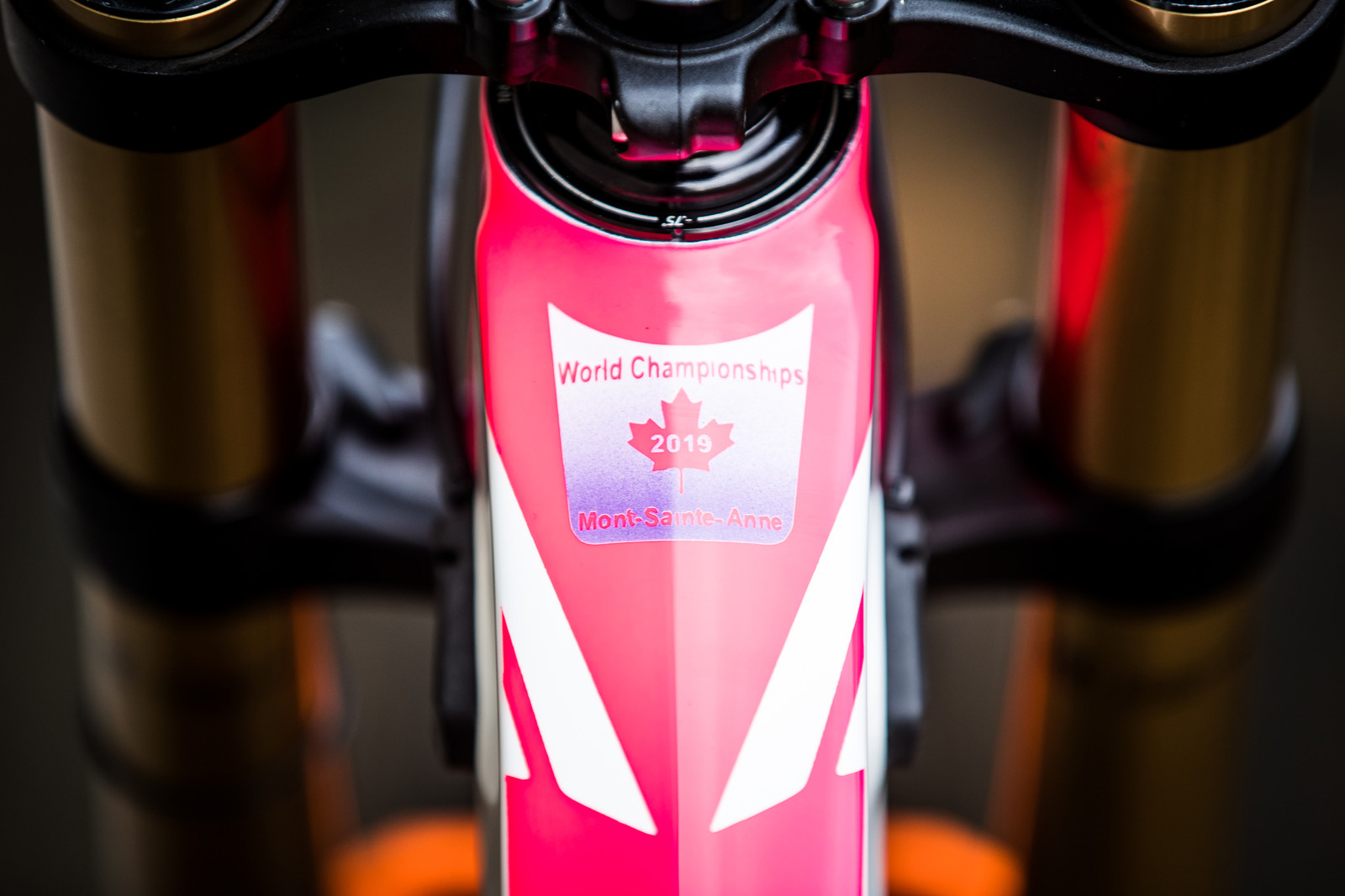 Bernard Kerr's 2019 World Championships Pivot Phoenix - Pivot World Championships Downhill Bikes - Mountain Biking Pictures - Vital MTB