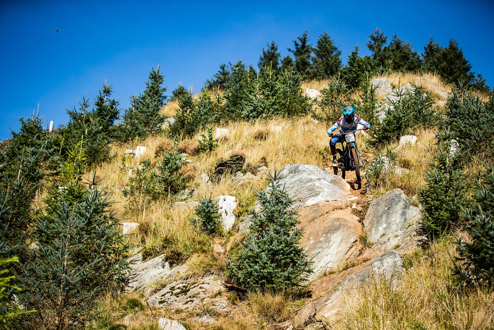 Alexandre Fayolle - Red Bull Hardline in Photos - Mountain Biking Pictures - Vital MTB