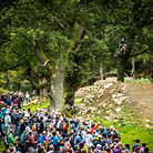 Red Bull Hardline in Photos