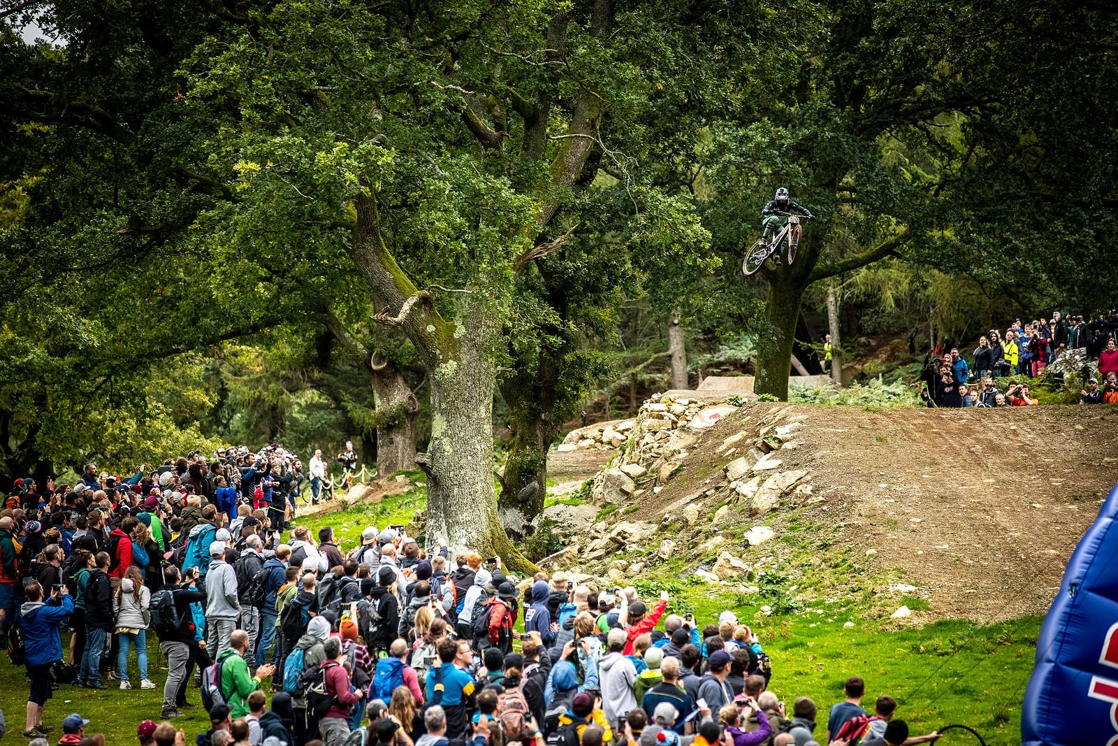 Red Bull Hardline in Photos - Red Bull Hardline in Photos - Mountain Biking Pictures - Vital MTB