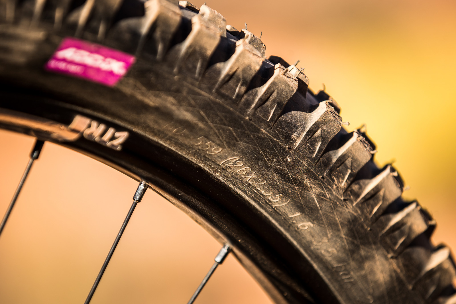 Schwalbe Tires on Kurt Sorge's Polygon XQuarone DH9 at Rampage 2019 - RAMPAGE BIKE - Kurt Sorge's Polygon XQuarone DH9 - Mountain Biking Pictures - Vital MTB