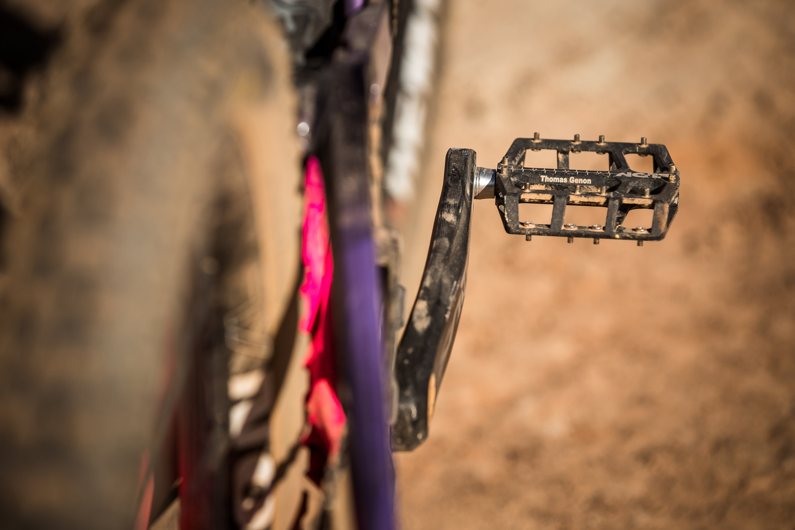 Shin Eaters on Thomas Genon's Rampage 2019 Canyon Sender - RAMPAGE BIKE - Thomas Genon's Canyon Sender - Mountain Biking Pictures - Vital MTB