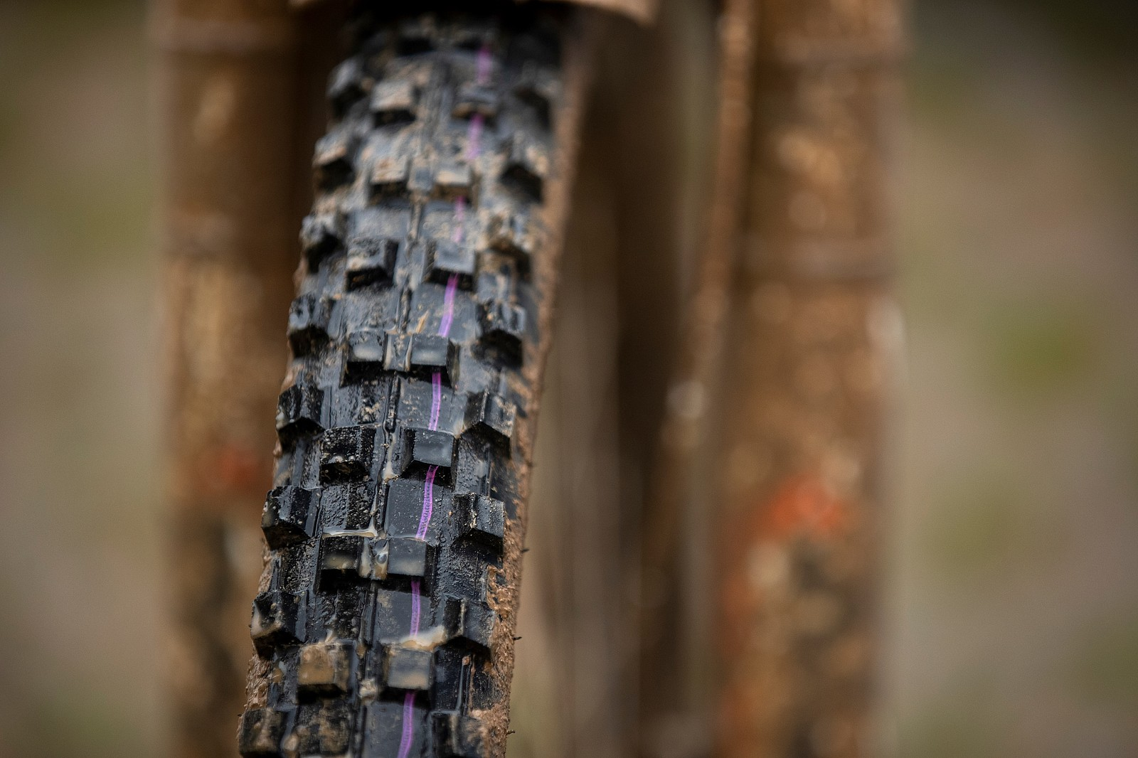 Cut Down Schwalbe Dirty Dan Up Front - WINNING BIKE: Camille Balanche's Commencal Supreme from World Champs - Mountain Biking Pictures - Vital MTB