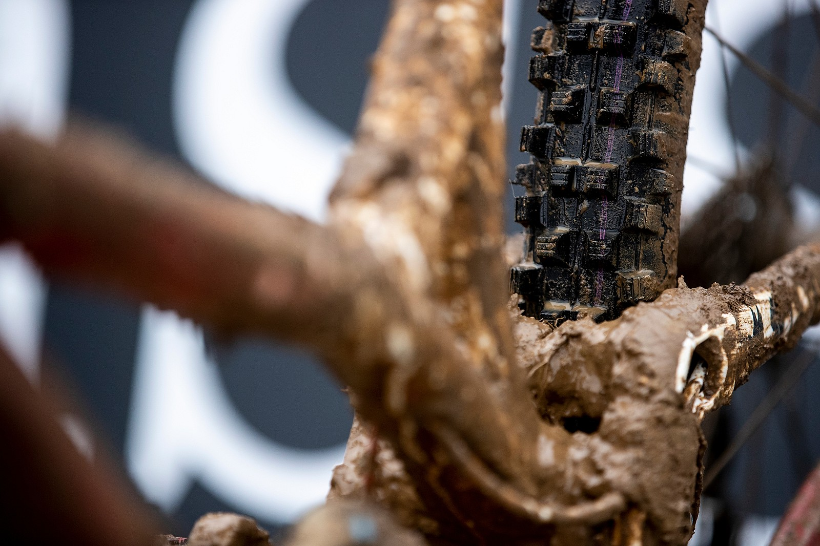 Schwalbe Dirty Dan Spikes - WINNING BIKE: Camille Balanche's Commencal Supreme from World Champs - Mountain Biking Pictures - Vital MTB