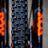 Greg Minnaar's Signature Maxxis Assegai Tire