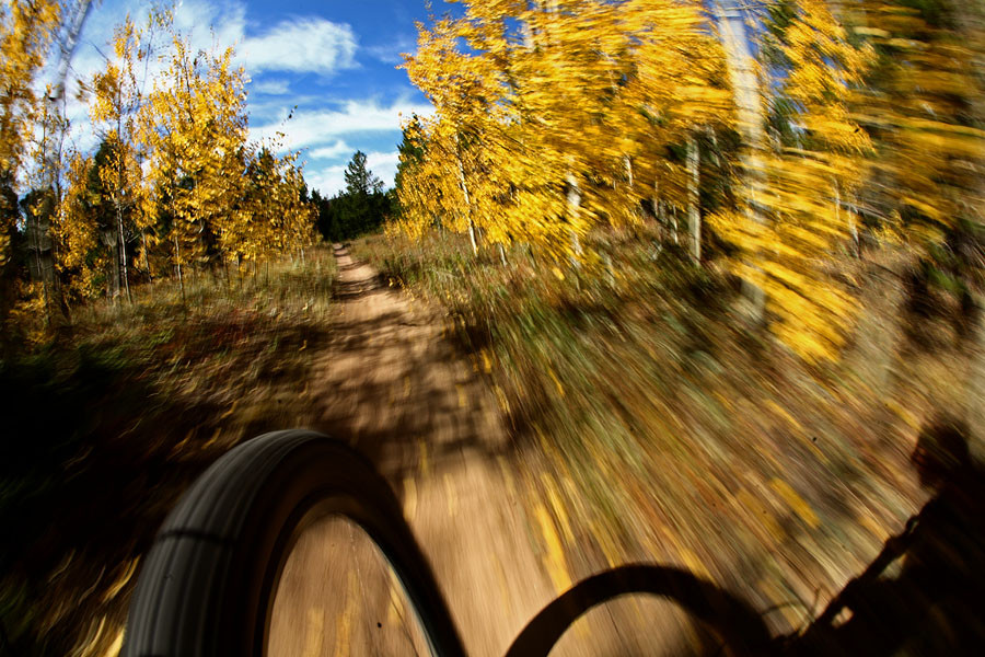 Looking ahead into the gold - Onboard Singletrack Shots - Mountain Biking Pictures - Vital MTB