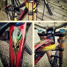 Aaron Gwin's Troy Lee Designs Specialized Demo for Fort William