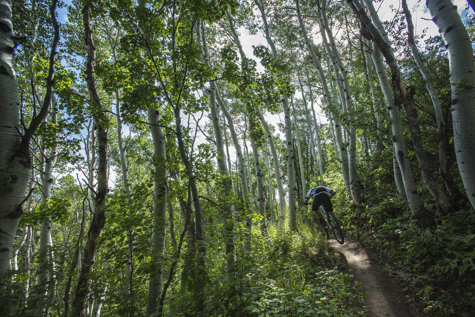 Holly's Trail at Canyons Resort - Race Report, Photos and Video: Bell Enduro Cup at Canyons Resort - Mountain Biking Pictures - Vital MTB