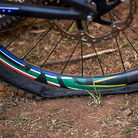 Greg Minnaar's Single Ply Maxxis Rear Tire After Crossing the Finish at World Champs