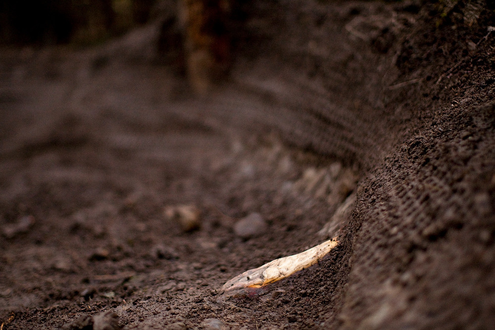 Roots and Roost - Port Angeles ProGRT Practice - Mountain Biking Pictures - Vital MTB