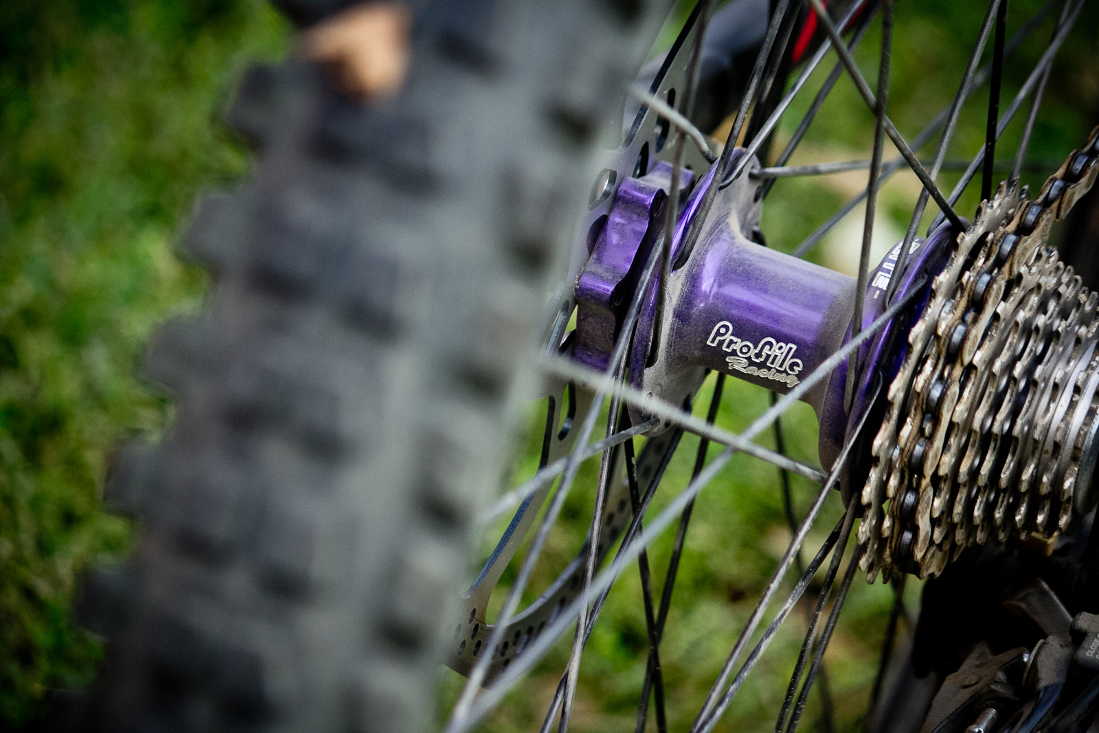 Profile Elite Hubs on Sun MTX Rims for Mike Montgomery at