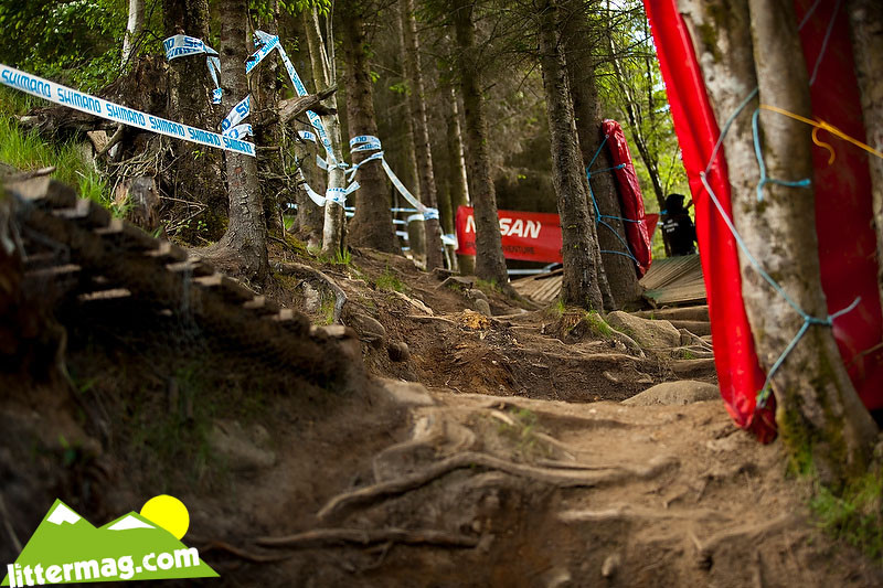 New woods - 2009 UCI World Cup Fort William - Day 1 - Mountain Biking Pictures - Vital MTB