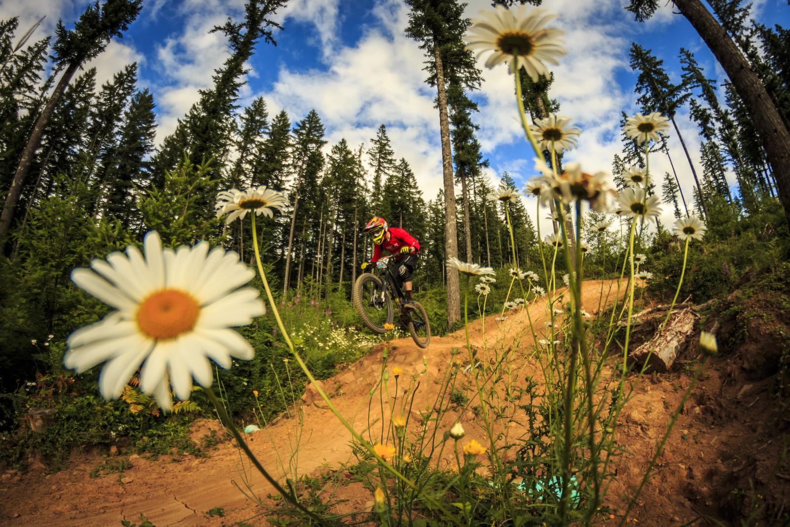 Brandon Porter, Oregon Enduro, Cold Creek - 2014 Oregon Enduro, Cold Creek - Mountain Biking Pictures - Vital MTB