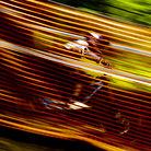 Gee Atherton Speed Blur