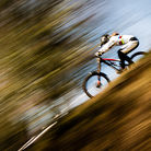 C138_dan_20150405_bds_aeforest_mg_4947